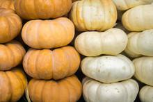 Orange And White Pumpkins For Sale; Seasonal Display; Background For Fall, Autumn; Halloween, Thanksgiving, California, California