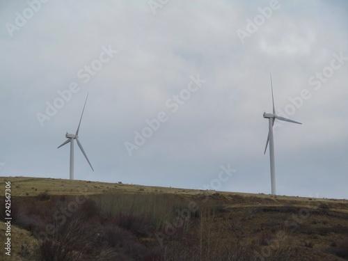 Fotografie, Obraz  wind turbine in field