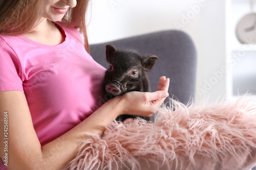 Woman with cute mini pig on sofa at home, closeup