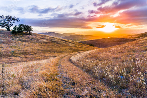 Cadres-photo bureau Amérique du Sud Walking path on the grassy hills of south San Francisco bay area at sunset, San Jose, California