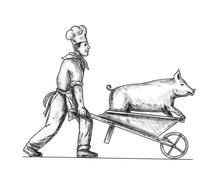 Chef With Wheelbarrow And Pig ...