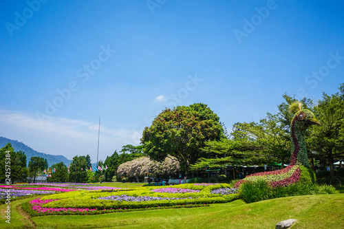 a peacock big statue made from green grass and plant with flower garden park as Canvas Print