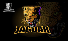 Jaguar Vector Logo Template. Vector Illustration Of A Big Cat Jaguar Or Leopard Head. Jaguar Head In Color.