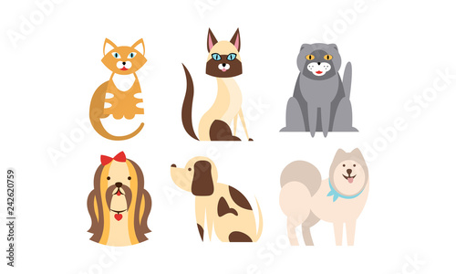 Wall Murals Cats Cats and dogs of different breeds set, cute pets, domestic animals, best friends vector Illustration