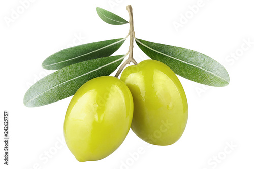 Foto op Aluminium Olijfboom Olive branch with two green olives, isolated on white background