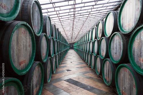 Photo  Oak barrels with the wine