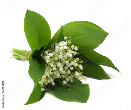 Wall Murals Lily of the valley lilies of the valley isolated on white background. top view