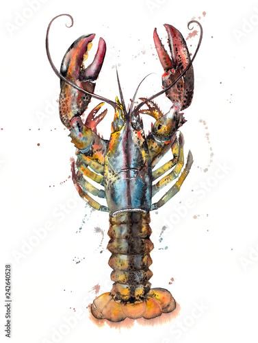 Splashy Lobster Watercolour Illustration Canvas-taulu