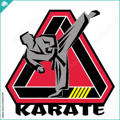 Karate high kick emblem Canvas Print