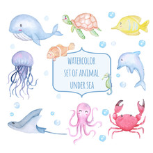 Set Of Watercolor Cute Animal ...