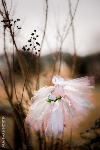 Fototapety, obrazy: Fairy Skirt