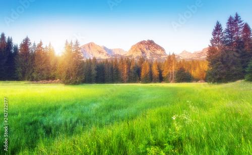 Foto auf Gartenposter Gebirge Scenic surroundings of the national park Durmitor. Location place Montenegro.