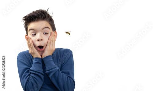 Fotografie, Obraz  Junge erschrickt vor einer Wespe