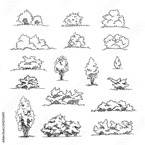 Canvas-taulu Set of hand drawn architect shrubs, vector sketch, architectural illustration