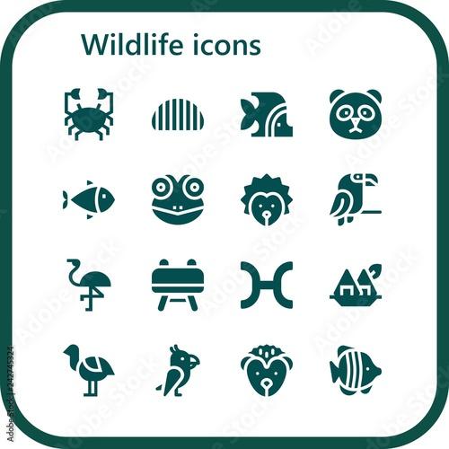 Autocollant pour porte Creatures wildlife icon set