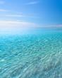 Leinwanddruck Bild Swim Time