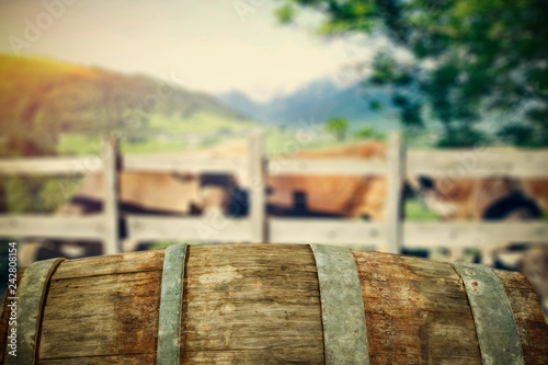 Fototapety, obrazy: Barrel background of free space for your decoration and landscape of Tuscany