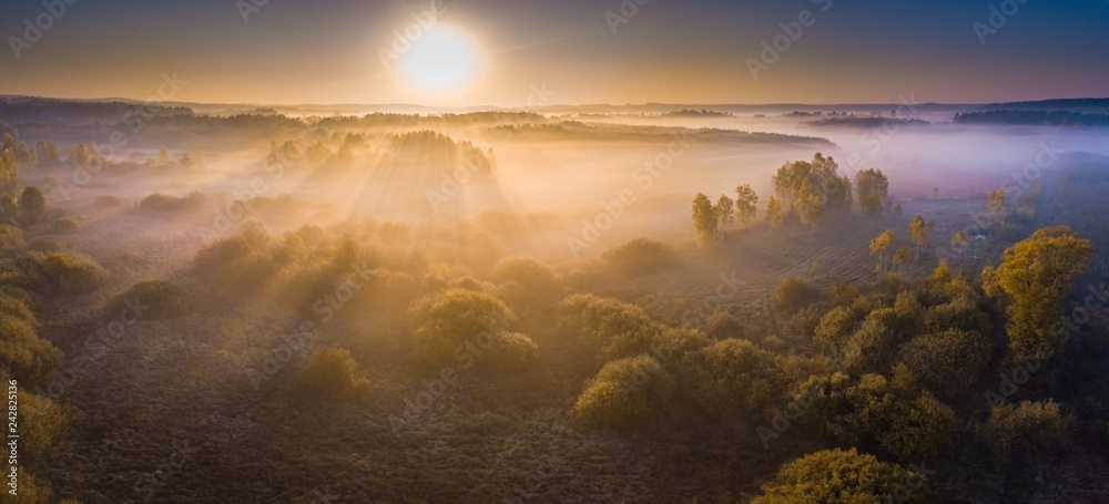 Fototapety, obrazy: Foggy morning aerial landscape. Forest and meadow at sunrise.