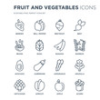 16 linear Fruit and vegetables icons such as Berries, Bell pepper, Apricot, Artichoke, Arugula, Acorn, Beans modern with thin stroke, vector illustration, eps10, trendy line icon set.