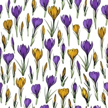 Seamless Pattern With Yellow And Purple Crocus Flowers. Hand Drawn Vector Illustration.