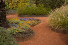 Close Up Parts Of Modern Gardening Design, Outdoors Plants In Summer Time