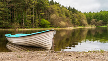 Peaceful Morning Landscape With A White Fishing Boat Tied And Anchored At Blessington Lake Shore In Dublin, Ireland, On A Beautiful Forest Background With Trees Reflected In The Water.