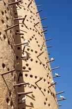 Dovecote In Qatar