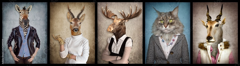 Fototapety, obrazy: Animals in clothes. People with heads of animals. Concept graphic, photo manipulation for cover, advertising, prints on clothing and other. Zebra, deer, moose, cat, goat.