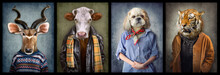 Animals In Clothes. People Wit...