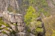 Sandbirke (Betula pendula) auf Felsen, Blick vom Hexentanzplatz Thale in das Bodetal, Mai, Frühjahr, Landkreis Harz, Ostharz, Sachsen-Anhalt, Deutschland, Europa
