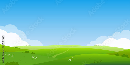 Aluminium Prints Blue Summer landscape background. Field or meadow with green grass, flowers and hills. Horizon line with blue sky and clouds. Farm and countryside scenery. Vector illustration.