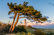 canvas print picture - Hiddensee Leuchtturm Dornbusch am Abend