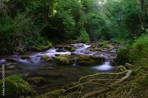 Fototapety, obrazy: Ruisseau en ardèche