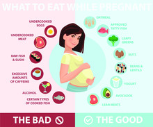 Pregnant Woman Diet Infographic.