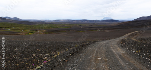 Wall Murals Eastern Europe Panoramic view at wild desert landscape from Austurleid road Eastern Iceland