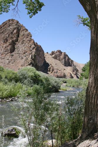 Fotografie, Obraz  Desert River Brings Life to a Barren Landscape