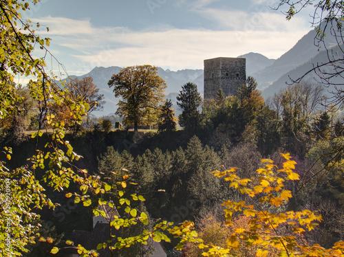 Fotografie, Obraz  Burg Tosters, Feldkirch