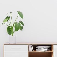 Modern Living Room Interior With A Wooden Dresser, Wall Mockup,  3D Render