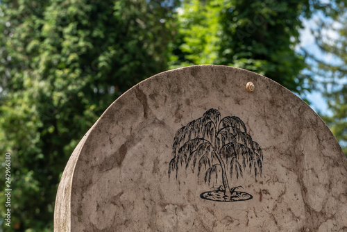 Saxon cemetery, located next to the Church on the Hill in Sighisoara Canvas Print