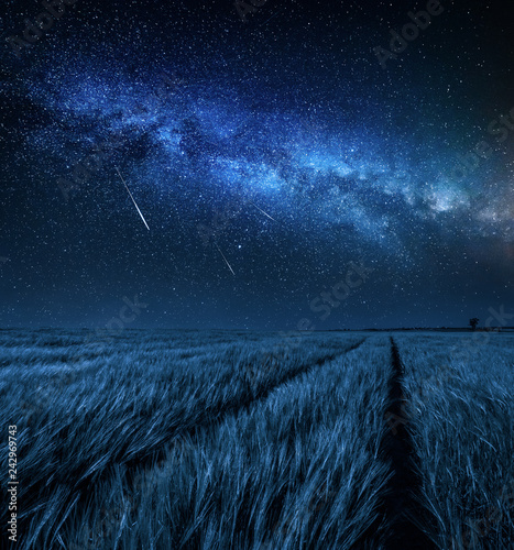 Foto auf Leinwand Blaue Nacht Big and blue milky way over field at night