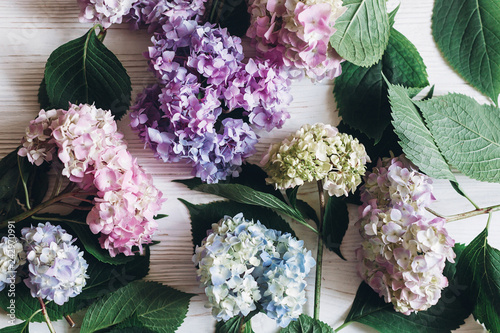 Montage in der Fensternische Hortensie Beautiful hydrangea flowers on rustic white wood, flat lay. Colorful pink,blue,green,white bouquet of hydrangea in creative composition. Hello spring. Happy mothers day. Women day