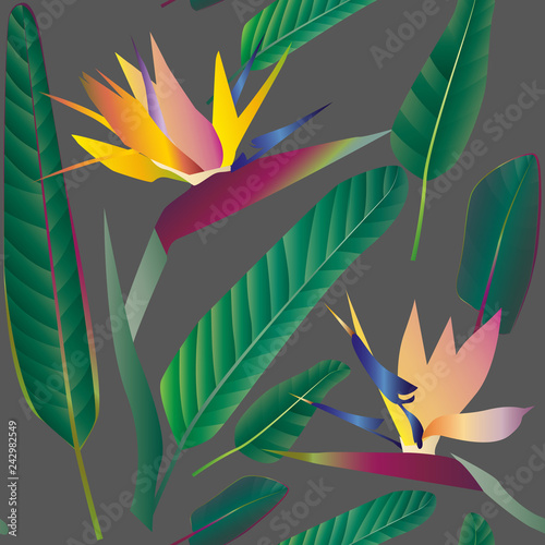 Photo sur Toile Empreintes Graphiques Strelitzia with leaves on a gray background. Seamless pattern.Tr