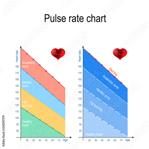 Pulse rate chart for healthy lifestyle. Maximum heart rate. Canvas Print