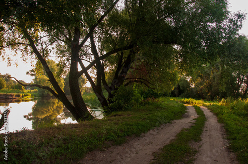 Recess Fitting Forest river Path through green forest and little river near. Places for walk on the fresh air in summer