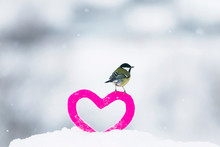 Cute Valentine Card With Bird Tit Stands On The Frame Of Knitted Decorative Element Of Pink Heart Stands In The Snow In The Park
