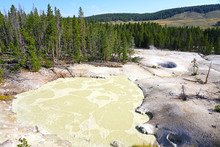 Bubbling Mud Pot In Yellowstone National Park