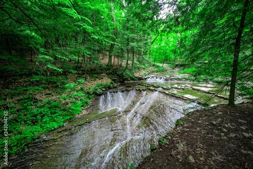 Fotografie, Obraz  Cuyahoga Valley National Park, Ohio, USA