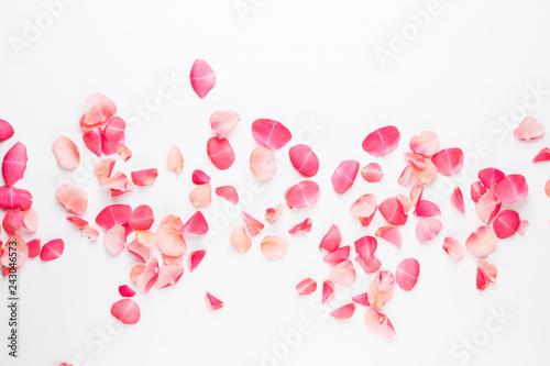 Naklejka premium Walentynki. Płatki kwiatów róży na białym tle. Walentynki-dzień tło. Leżał płasko, widok z góry, miejsce kopiowania.