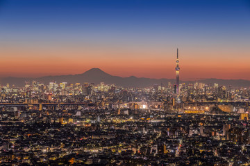 Mt. Fuji and Tokyo city view in evening