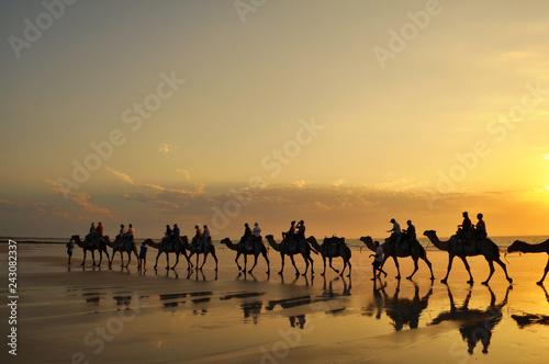 Canvas Prints Morocco ラクダとケーブルビーチ